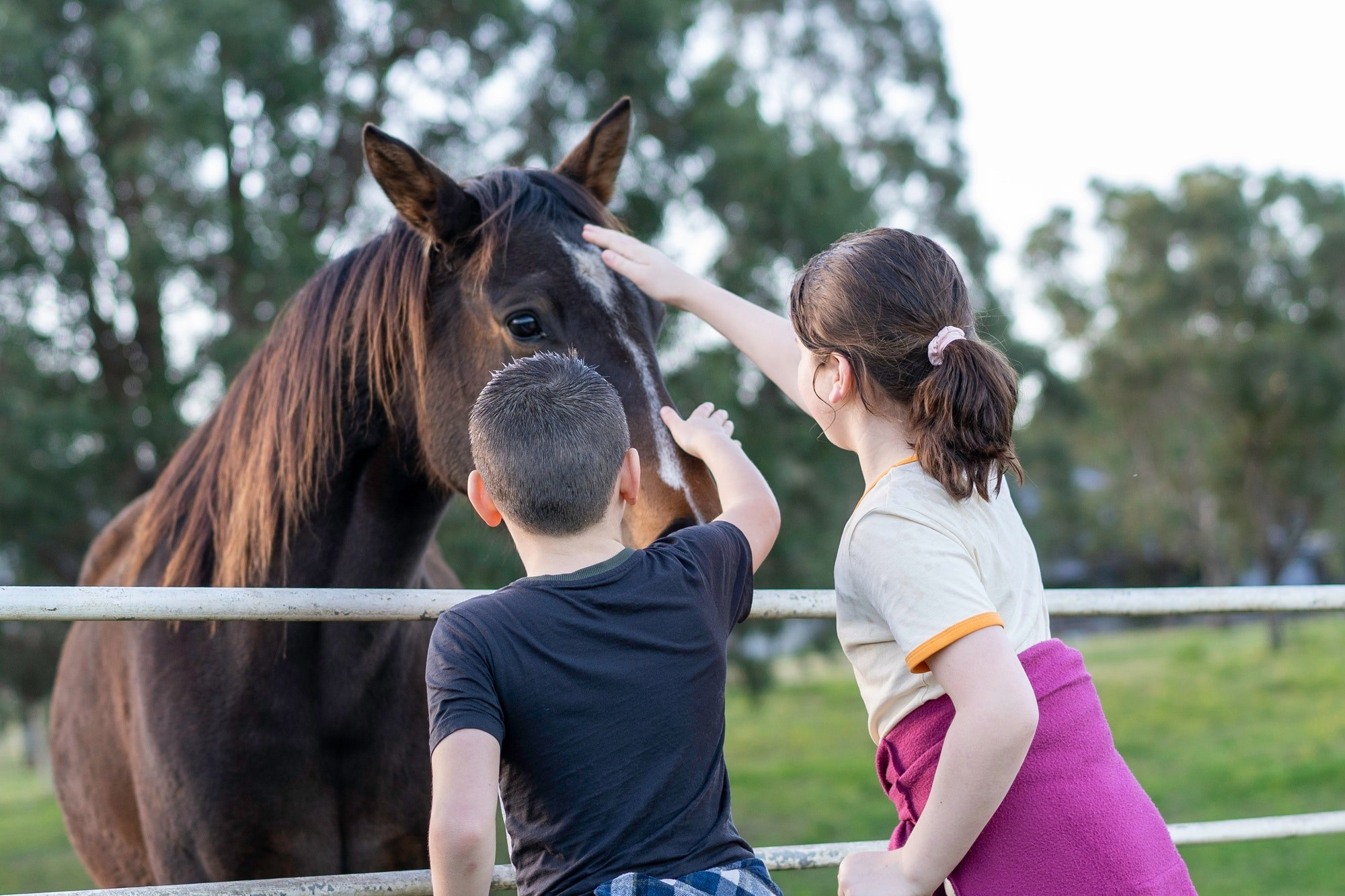 two children patting a horse on a farm, view from behind of the children.